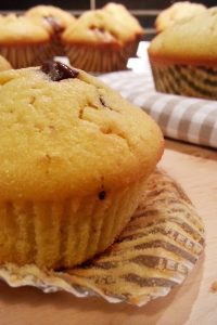 chocolate-cranberry-muffins-1