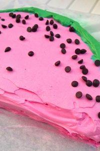 watermeloncake3